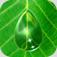 【AQUA FOREST】常識を覆す新感覚パズルゲーム!癒されるビジュアルと音楽で不思議体験ができるアプリ。