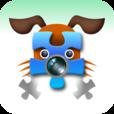 【Jigsaw Camera】カメラからのライブ映像がジグソーパズルになる楽しいアプリ。