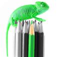 【Color+】カラーが際立つ写真を作成するアプリ。簡単操作でお洒落な一枚を!