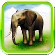 【REAL ANIMALS HD】立体的で迫力満点!リアルな動物たちに触れて楽しめるアプリ。
