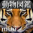 【動く!動物図鑑 mini】動物たちが動き出す!動画でも楽しめる新しい形の動物図鑑。