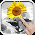 【PixelWorks】多様なフィルターでステキな写真に!とってもお洒落な写真加工アプリ。