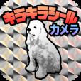【キラキラシールカメラ】あの懐かしいキラキラシール風の画像が作れるアプリ。